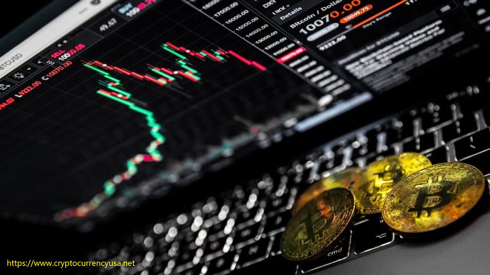 A new trend has gripped the crypto industry