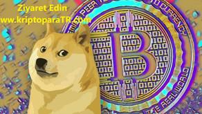 Ankete göre 4 Amerikalıdan 1'i Dogecoin'i 'yeni Bitcoin' olarak görüyor