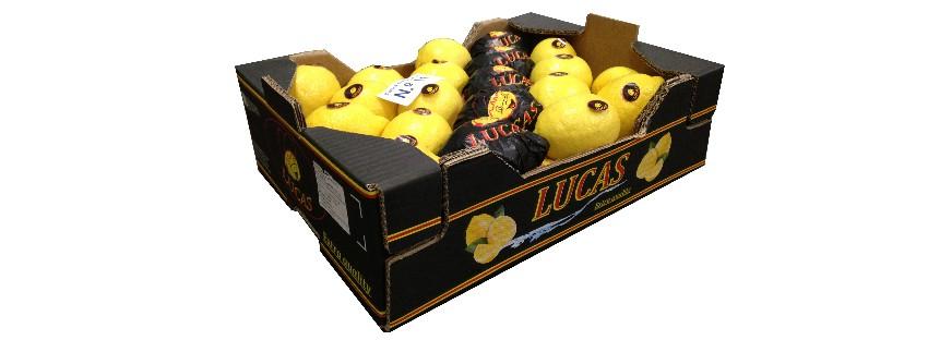 Colis Citron Lucas (2)