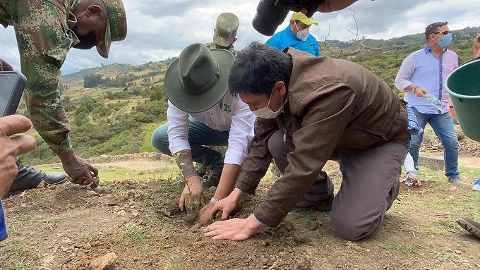 2.500 árboles sembrados en Tibasosa