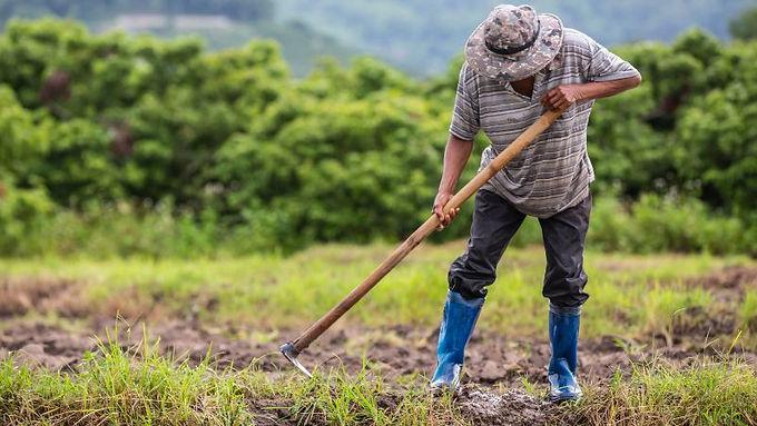 El campo a un clic, emergencia económica, social y ecológica