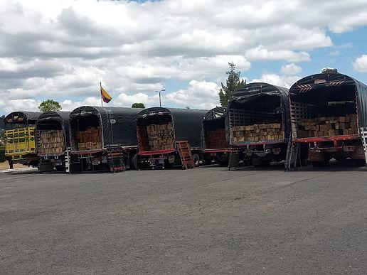 40 capturados y judicializados en dos días de actividades contra la deforestación y la minería ilegal