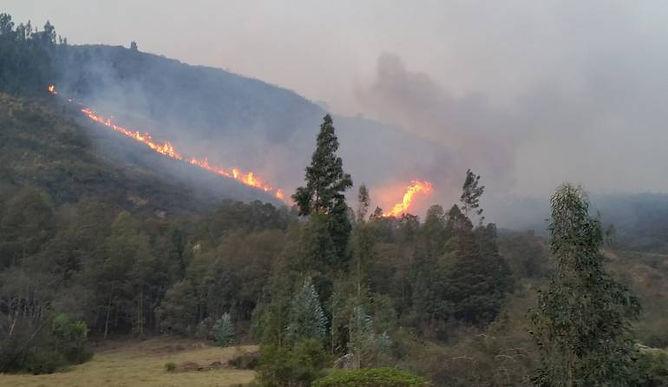 Betéitiva y Floresta luchan contra las llamas por más de tres días