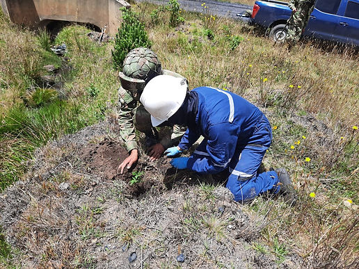 El Ejército sigue sembrando árboles por Boyacá