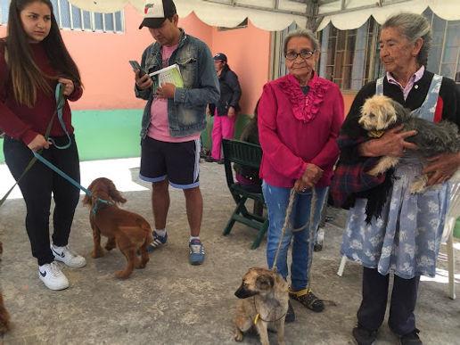 En Duitama desarrollaron app para el censo canino y felino
