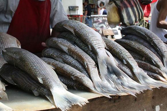 60 libras de pescado incautadas en la plaza del Sur de Tunja