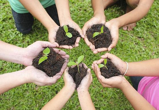 U Nacional apoyará a Corpoboyacá para la restauración ecológica