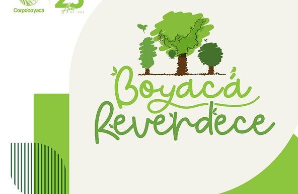 45 mil nuevos árboles para Boyacá
