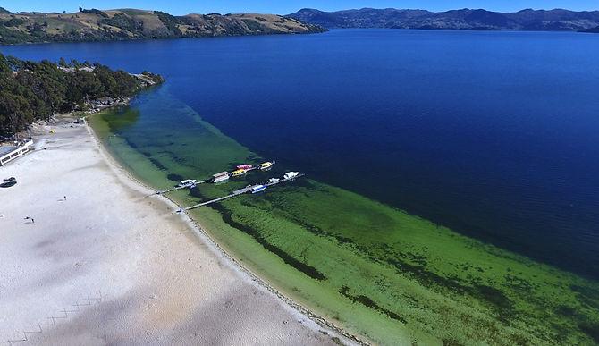 ¿En qué va la protección del lago de Tota?