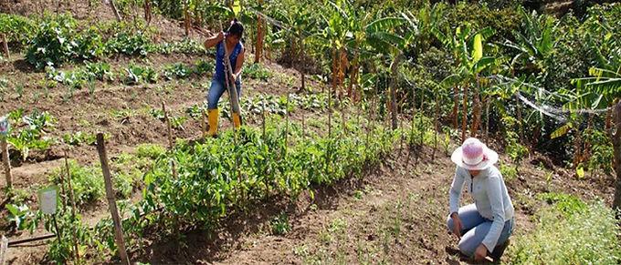Sector del agro exige soluciones a las problemáticas
