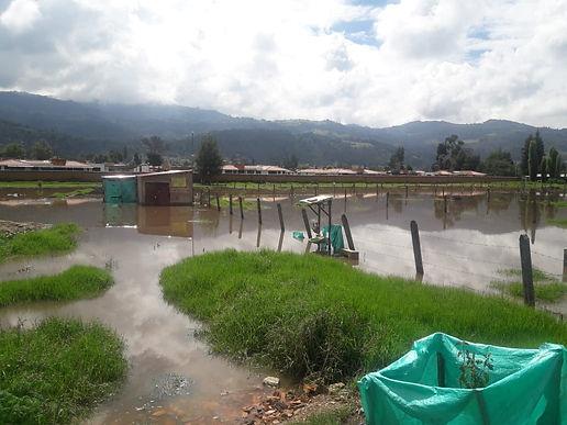 Caída de árboles e inundaciones en Sogamoso