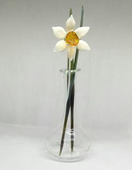 Daffodil 1.png