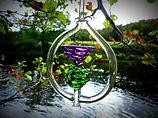 hanging thistle purple