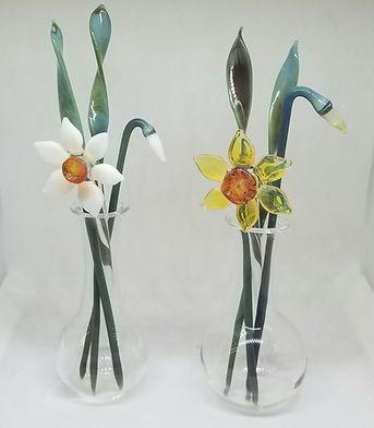 daffodil both new.jpg