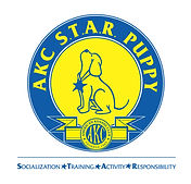 AKC Puppy Star Evaluator