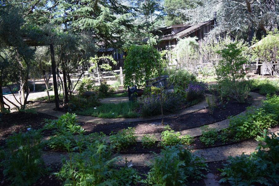 Spirit House Garden Spring 2016