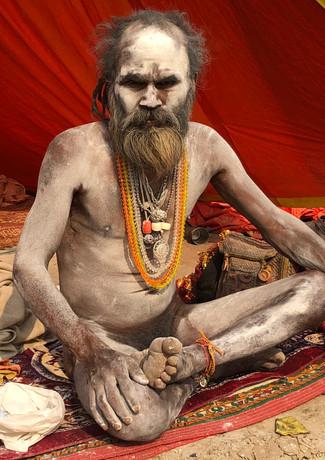 Sadhu Kumbh Mela