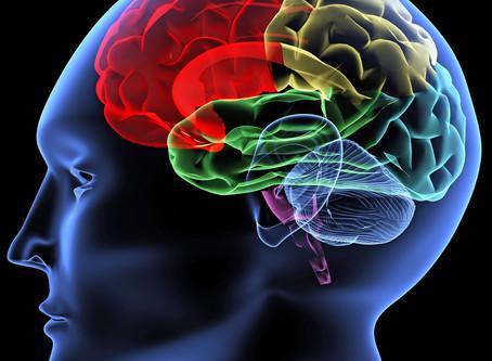 Omega-3 og hjernefunksjon - hva skal man velge, EPA eller DHA?