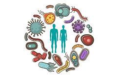 the-human-microbiome.jpg