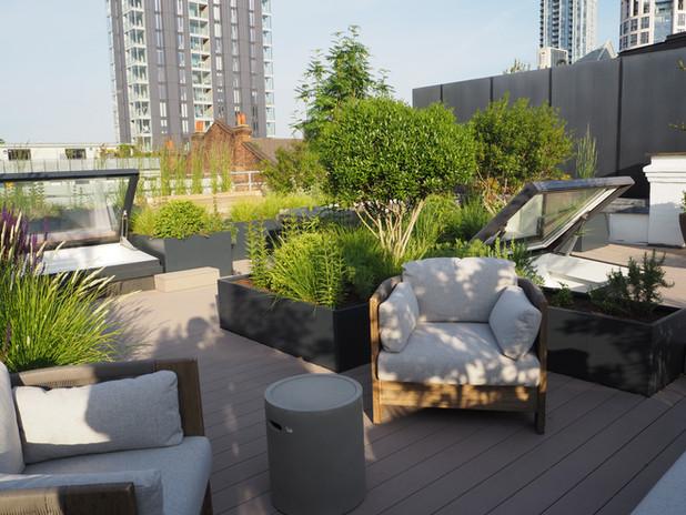 Rooftop garden lounge