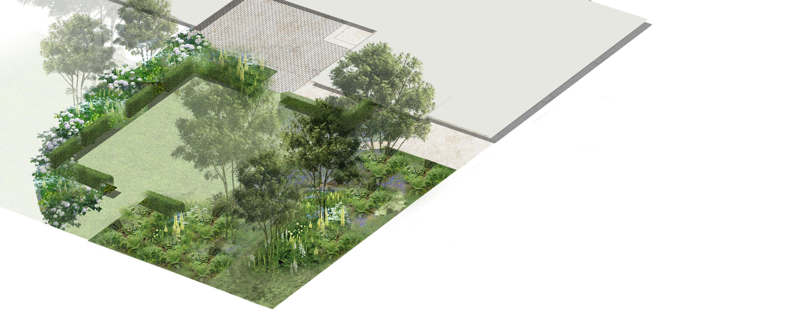 Back garden axo web.jpg