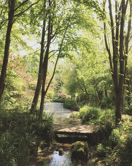Abbey House Gardens, Malmesbury - spectacular 🙇🏻♀️🍃🙏🏻