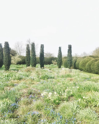 surreal.jpg another incred view 📷 💥 of Tom Stuart-Smith's Barn Garden.jpg
