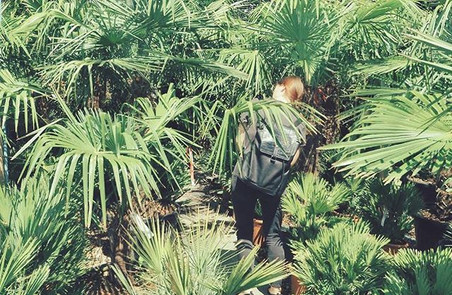 👀 THE ONE is always hiding at the furthest-deepest-darkest corner 🌴 fact.jpg