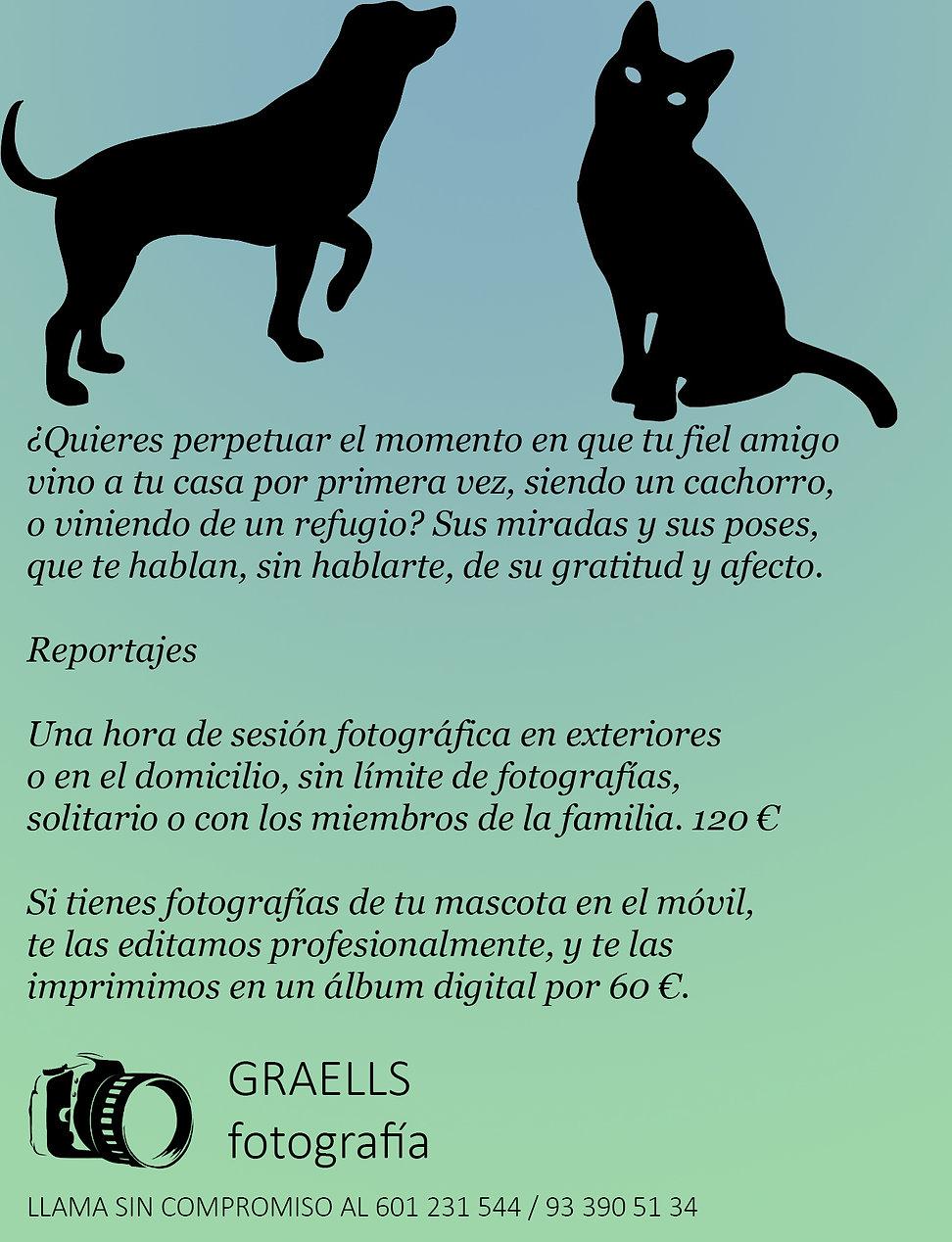 Anuncio mascotas.jpg