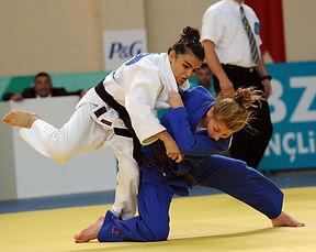 judo sussex