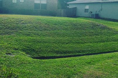 lawn care, landscapes