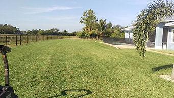 Lawn Care landscapes