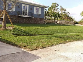 lawn , lawn care
