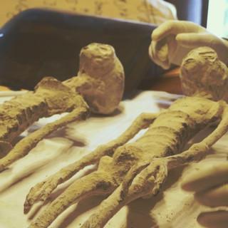 Nazca Alien Mummies