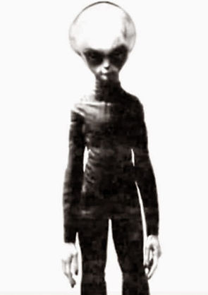Alien-gray003 copy.jpg