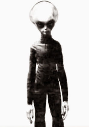 Alien-gray003 copy.jpg