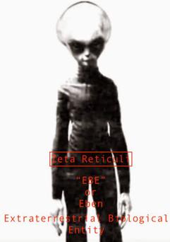 Zeta Reticulan