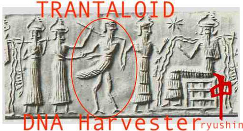 A Trantaloid, Insect Like Beings In Sumarian