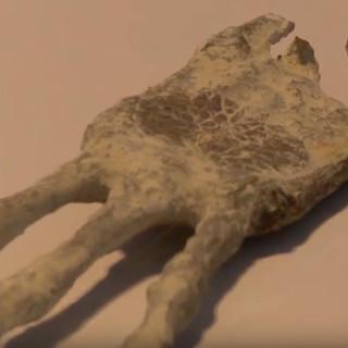 Nazca Alien Mummies Energy Weapons