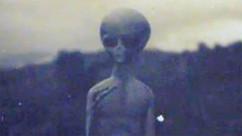 Possible Nazca Alien