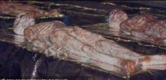 Dead EBE Bodies