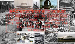 The Adrenochrome Holocaust