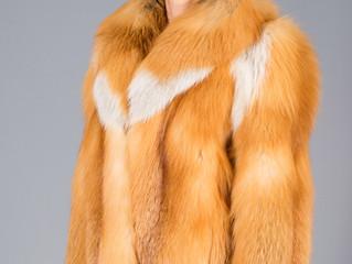 Как ухаживать за изделиями из меха лисы