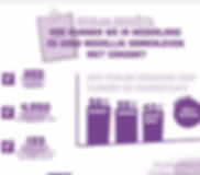 infographic-enquete-ddv.JPG
