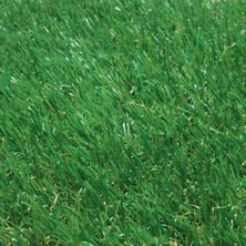 Proturf Landscaping - Bermuda 50
