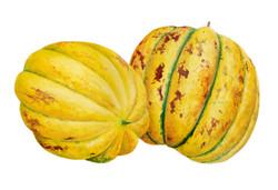 Melón plátano