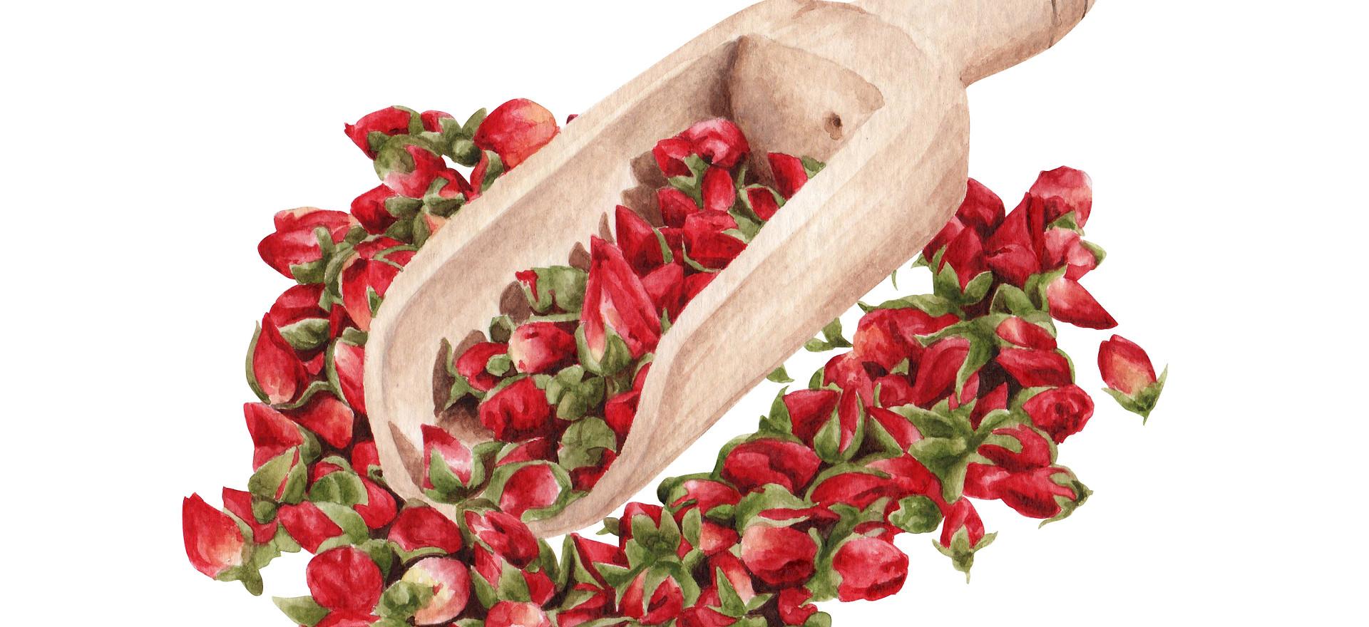dried rose buds.jpg