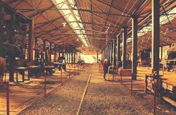 Estaciones Culturales_Museo.png