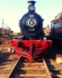 Tren del Lago_2.png