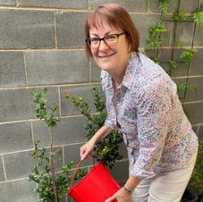 Susan Templeman MP - Federal Member for Macquarie